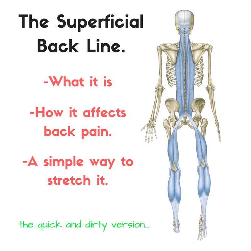 the superficial back line sbl and back pain a super simple
