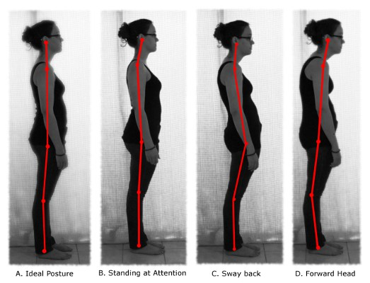 Improve your lower back pain and posture with these 5 back ...